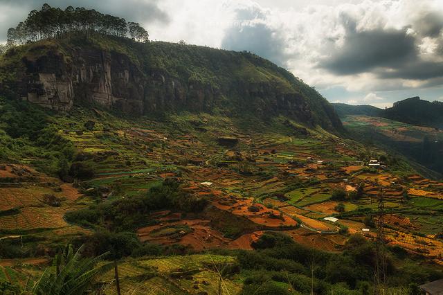 A Sri Lankan off-the-mapadventure